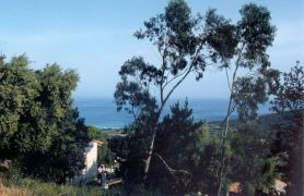 Photo of Gites de France Accommodation No. 50148 in Corsica